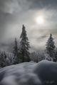 mt ellinor, olympic mountains, washington, fog, dramatic, quiet, snow, freshly fallen snow