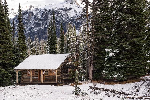 cabin, woods, indian henry's hunting ground, mt rainier, mt rainier national park, ranger's cabin, meadow, trees, mt. rainier, hike