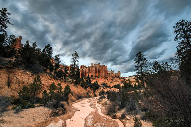 twilight, bryce canyon, bryce canyon national park, trail, photograph, people