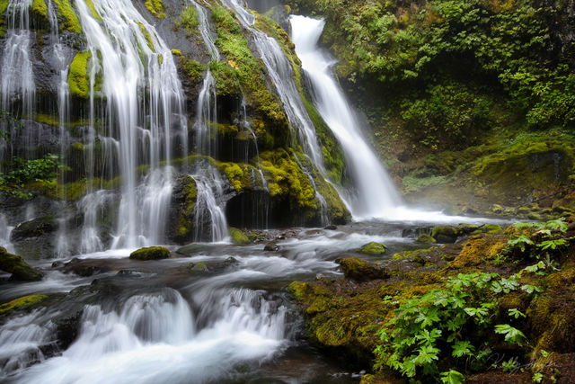 cascading, panther creek falls, falls, photographing, columbia river gorge, compositions, photographed, waterfall