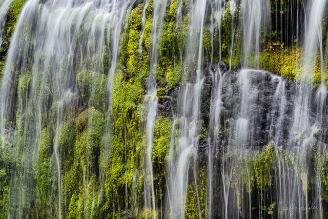 streaming, panther creek falls, columbia river gorge, water, moss, serenity