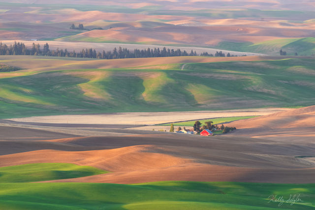 the palouse, landscape, breathtaking, red barn, morning