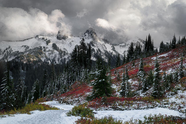 paradise, mt rainier, snow, fall, color, moody, clouds