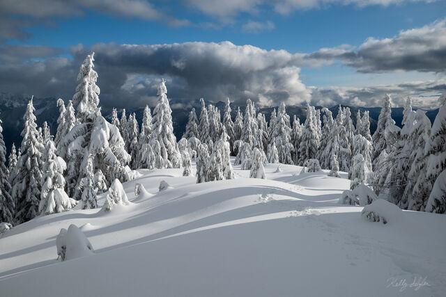 Winter Grandeur