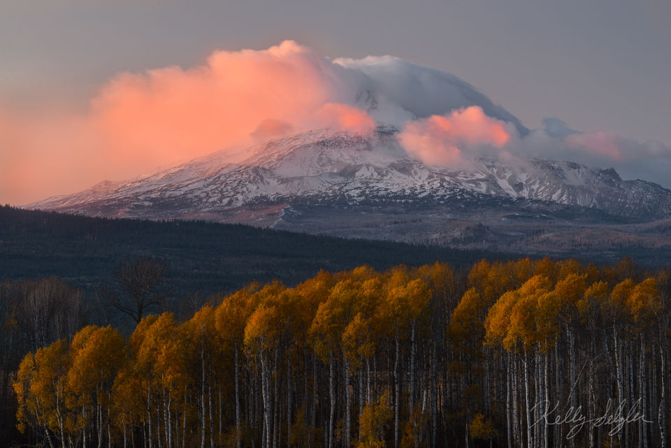 mt adams, sunset, clouds, pink, mountain, aspen trees, magical