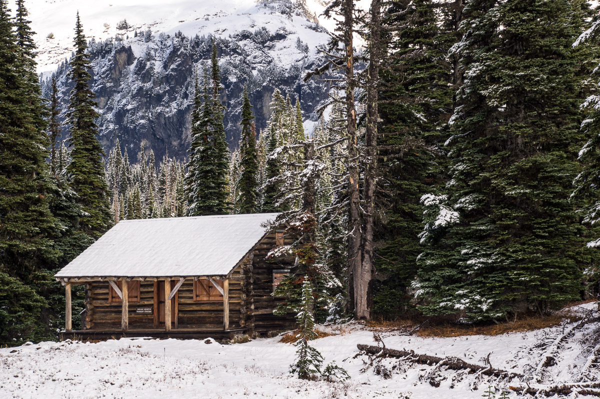 cabin, woods, indian henry's hunting ground, mt rainier, mt rainier national park, ranger's cabin, meadow, trees, mt. rainier, hike, photo
