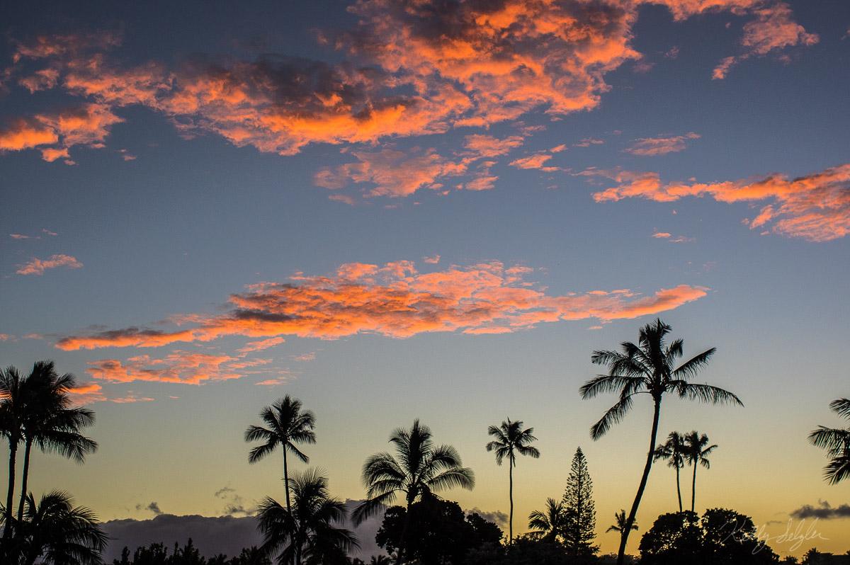 poipu beach, kauai, hawaii, sunrise, magical, morning, palm trees, orange, yellow,, photo