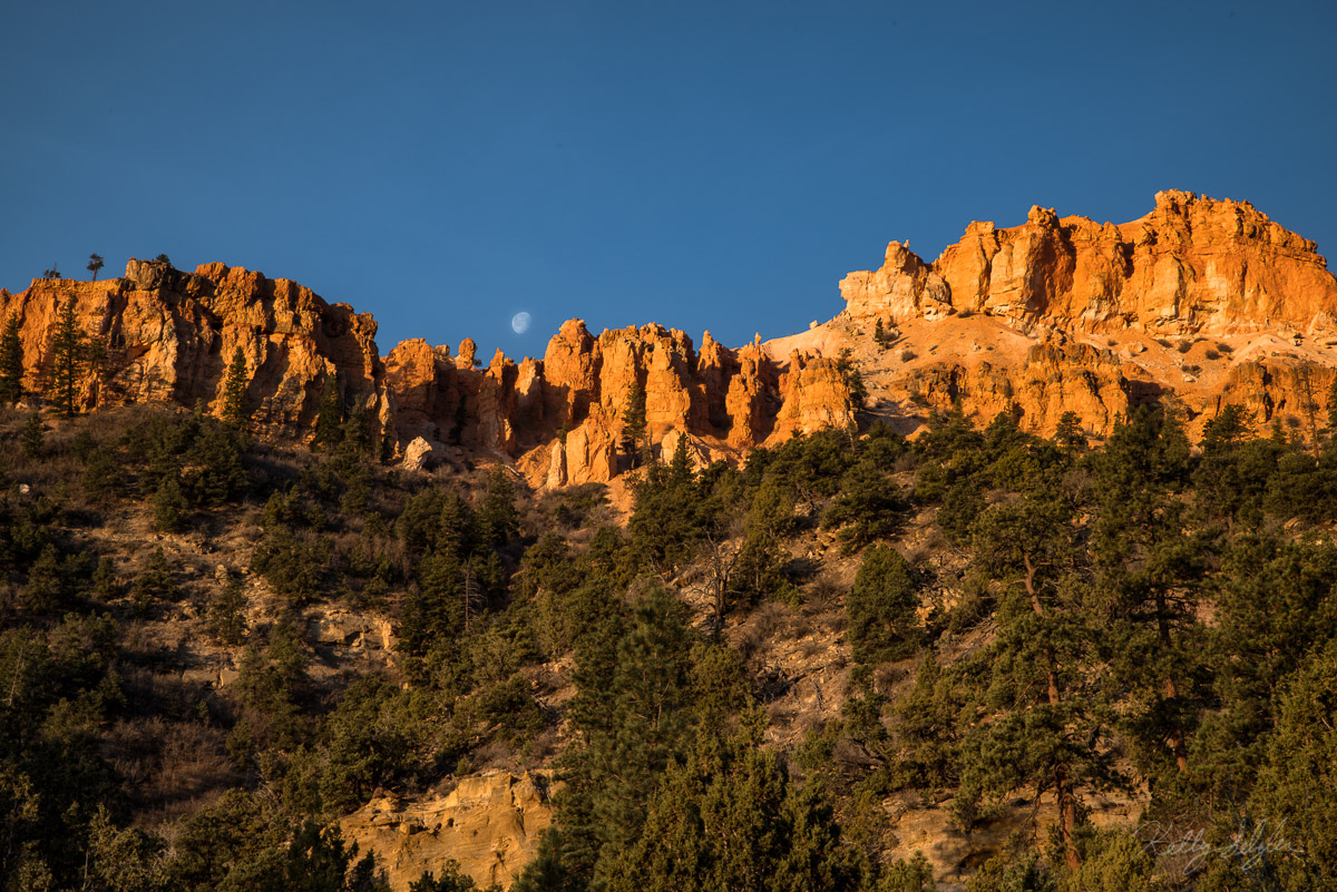 landscape, orange, bryce canyon, bryce canon national park, hiking, orange cliffs, blue sky, moon, photography, photo