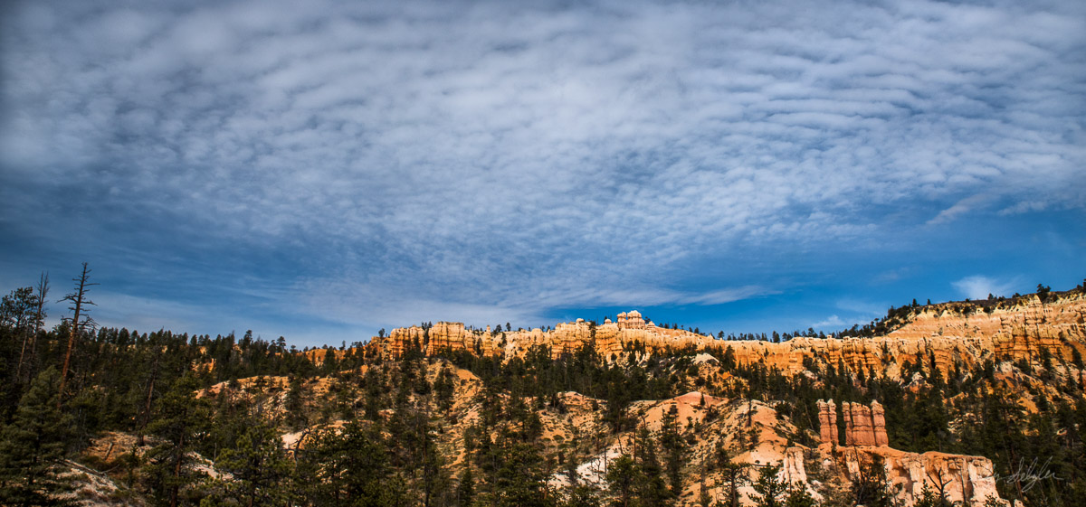 As we were hiking back up to the top of the canyon, I noticed some unique cloud formations. I loved how the blue skies contrasted...