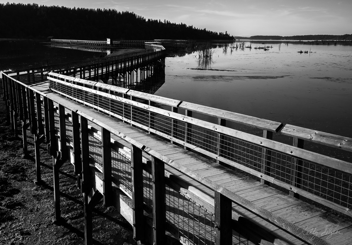 This beautiful boardwalk goes on forever, allowing people to see such beauty in the Fort Nisqually Wildlife Refuge.