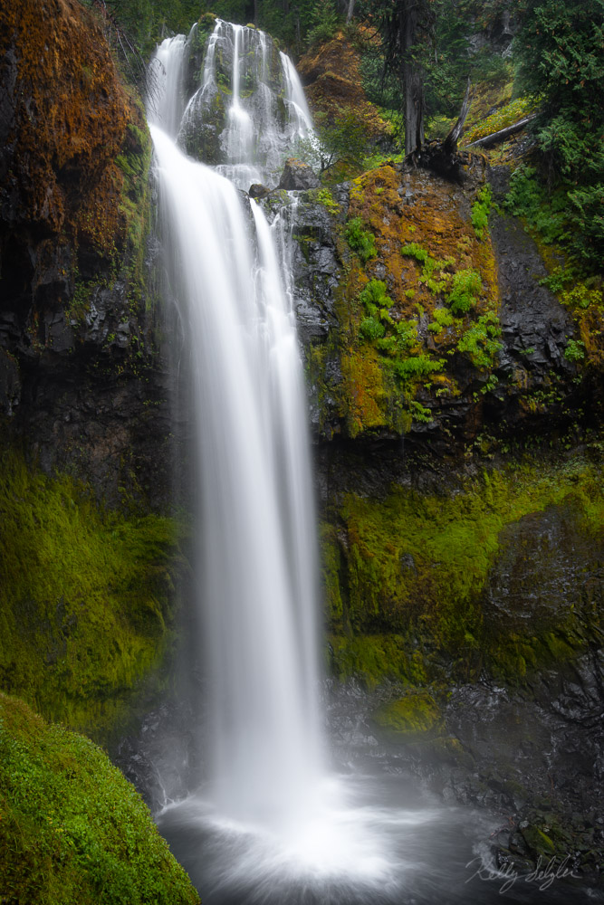 graceful, falls creek falls, falls, hiking, waterfall, rush, water, view, power, beauty, waterfalls, peace, photograph, columbia river gorge, photo