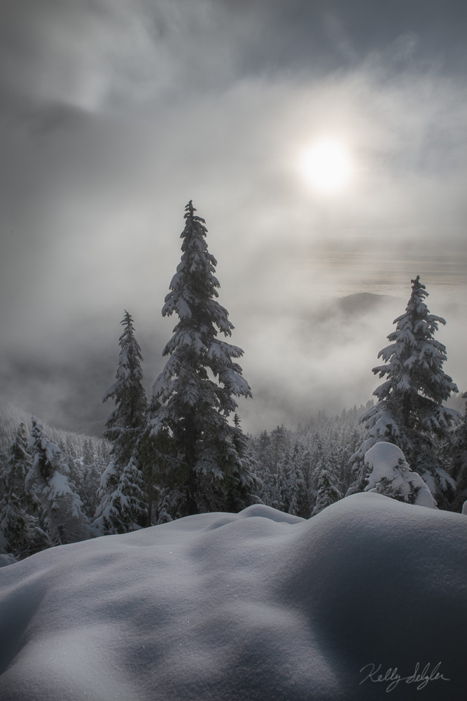 mt ellinor, olympic mountains, washington, fog, dramatic, quiet, snow, freshly fallen snow, photo