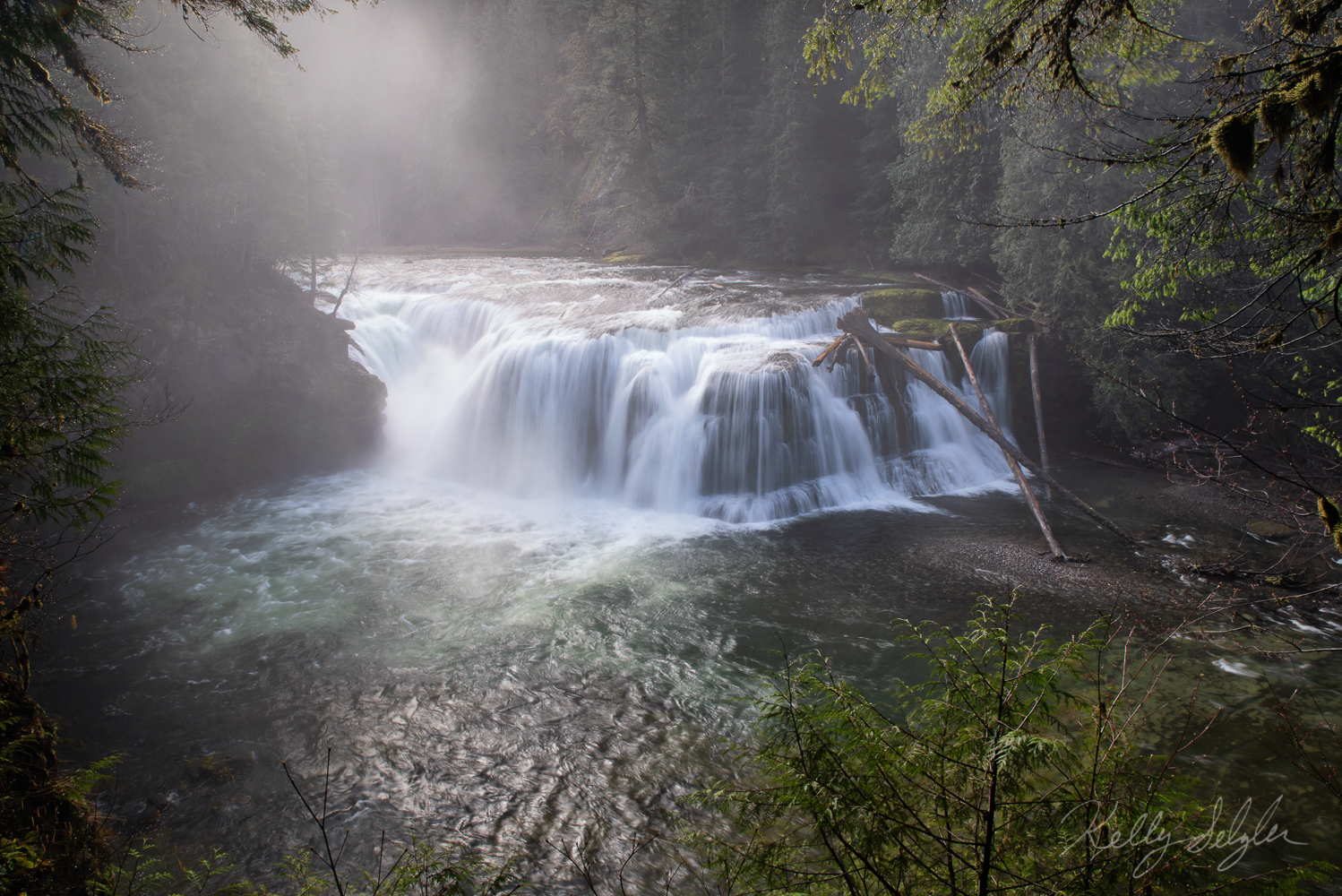 Overlooking Lower Lewis Falls on a gorgeous foggy morning.
