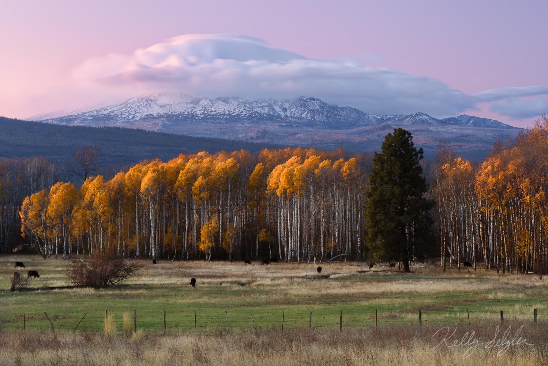 mt adams, glow, sunset, color, sun, clouds, mountain, photo