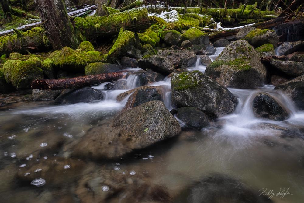 bubbling brook, cascade mountains, mason creek, photo