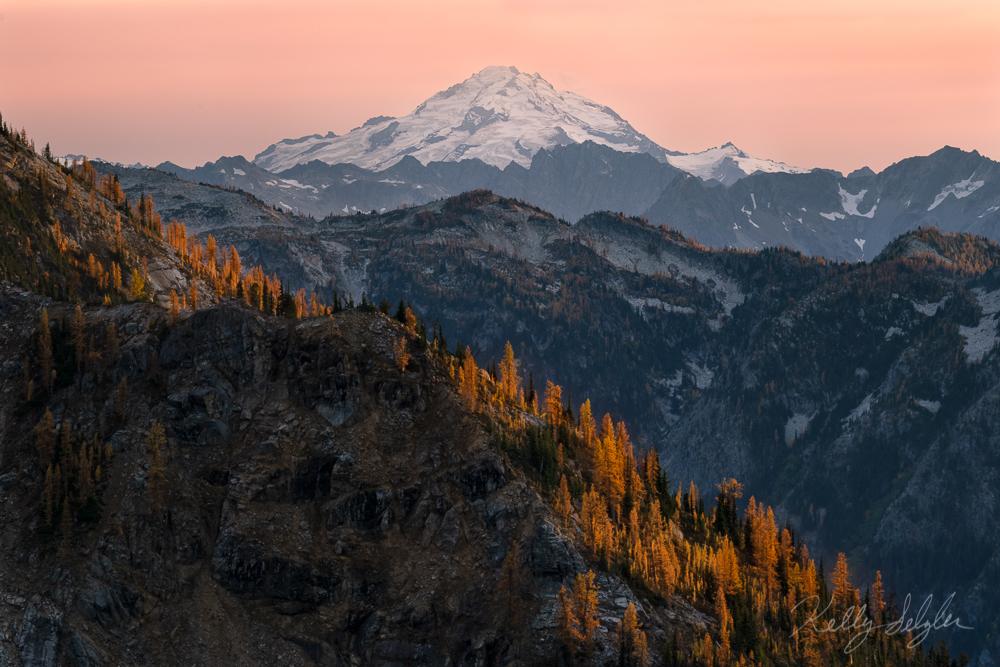 Glacier Peak Larches