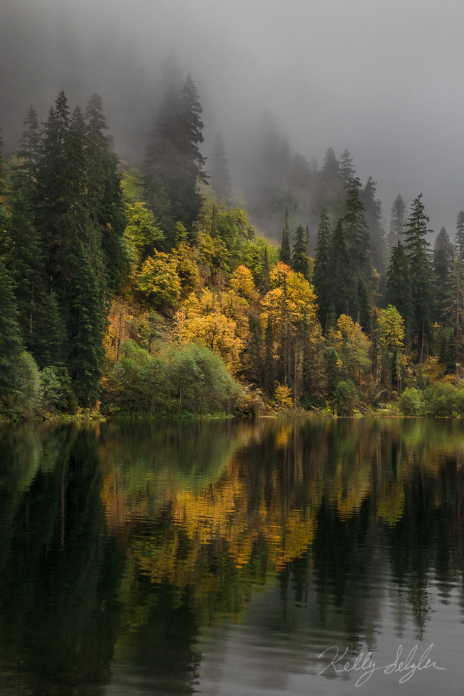 This photo includes my favorite combo: fall color and fog!