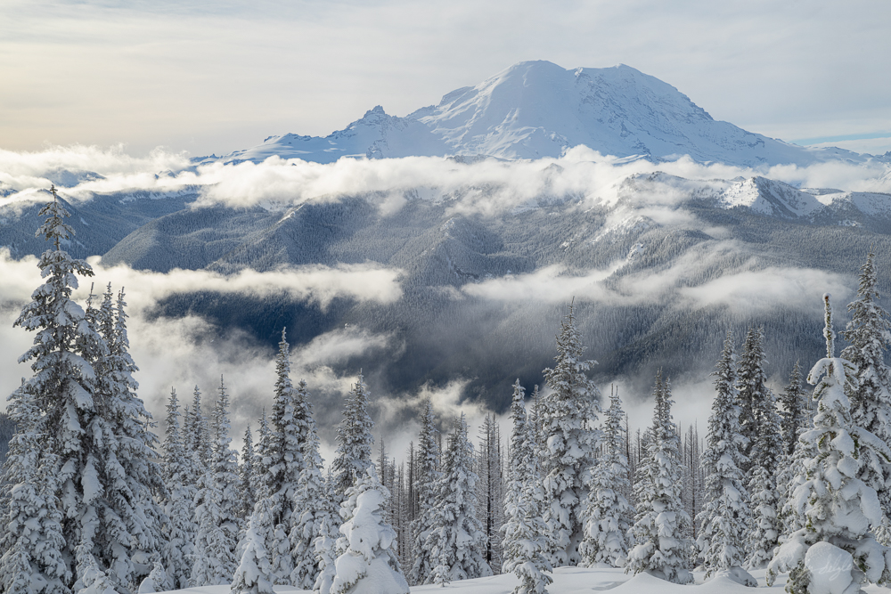 Mt. Rainier Winter